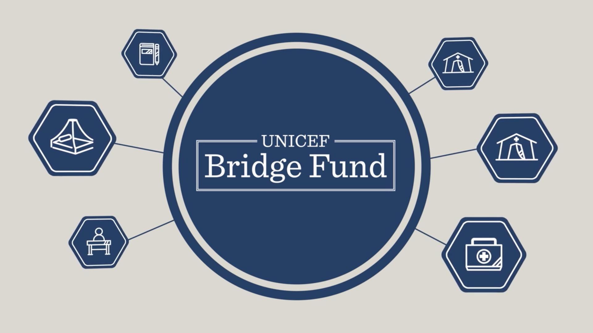 UNICEF Bridge Fund Video & Brochure